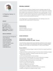 NE0144 Marketing Manager Template - English