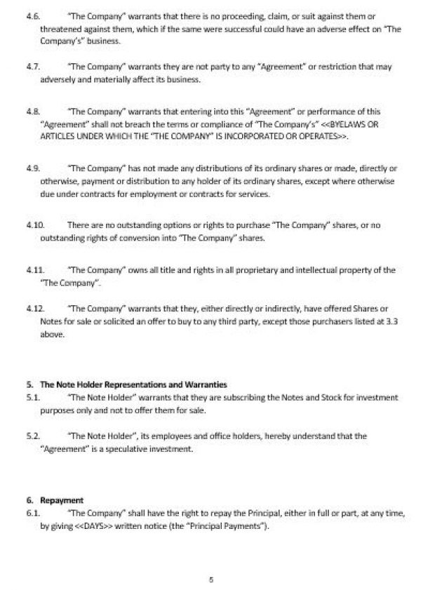 Ne0185 Convertible Note Agreement Template – English – Namozaj
