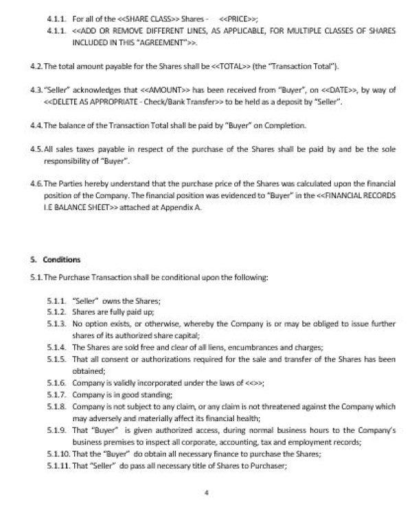 Ne0163 Company Purchase Agreement Template English