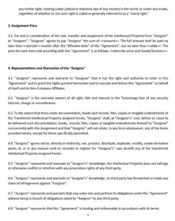 Ne Intellectual Property Assignment Agreement Template  English